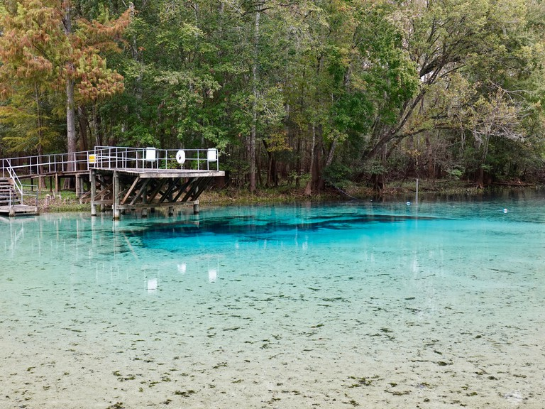 Blue Springs State Park, Florida, USA