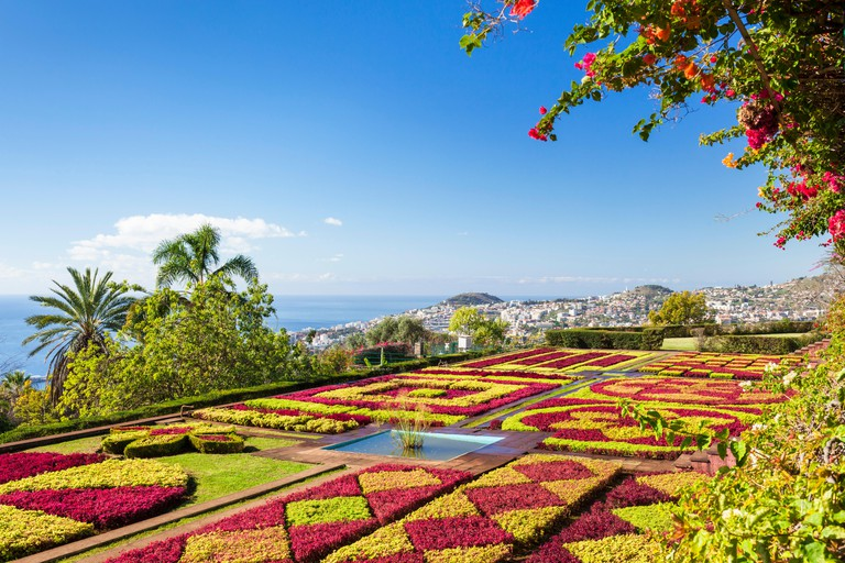 MADEIRA PORTUGAL MADEIRA Botanical gardens FUNCHAL BOTANICAL GARDENS Jardim Botanico above the capital city of funchal, Madeira, Portugal, EU, Europe