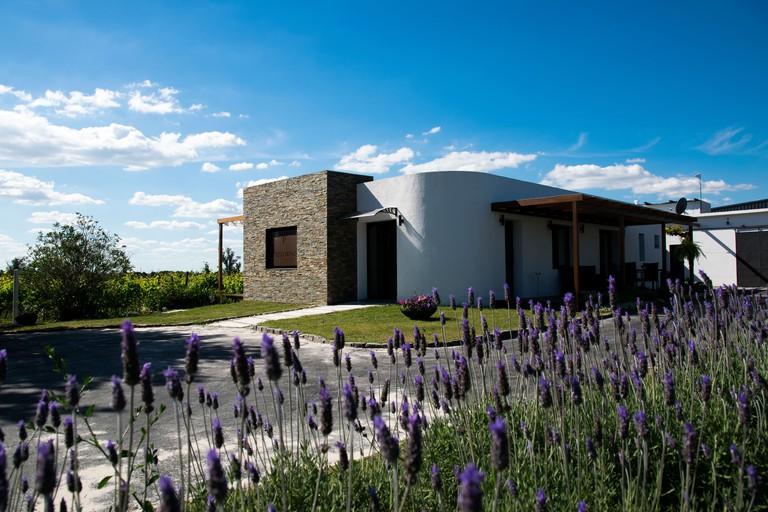 Pizzorno Lodge & Wine