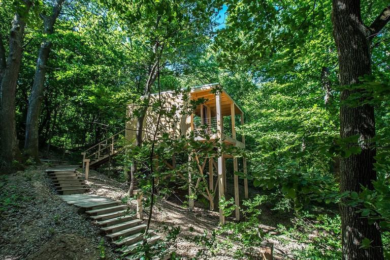 Treehouses Noszvaj