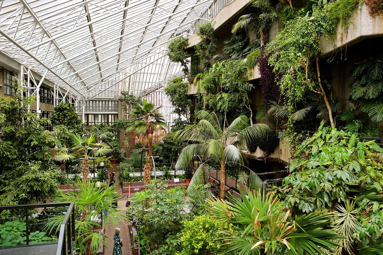 Visit the second biggest Conservatory in London and explore our hidden tropical oasis.For the first time, the Conservatory is open seven days a week throughout the summer.As well as three ponds, the Conservatory houses more than 1,500 species of plant