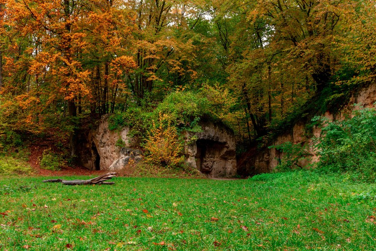 The Savelsbos is a forest with former quarries which is now given back to nature and gives amazing possibilities for hikes. Special during autumn