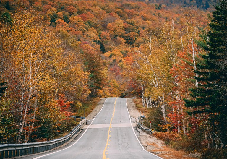 Autumn color on a road in Grafton Notch State Park, Maine