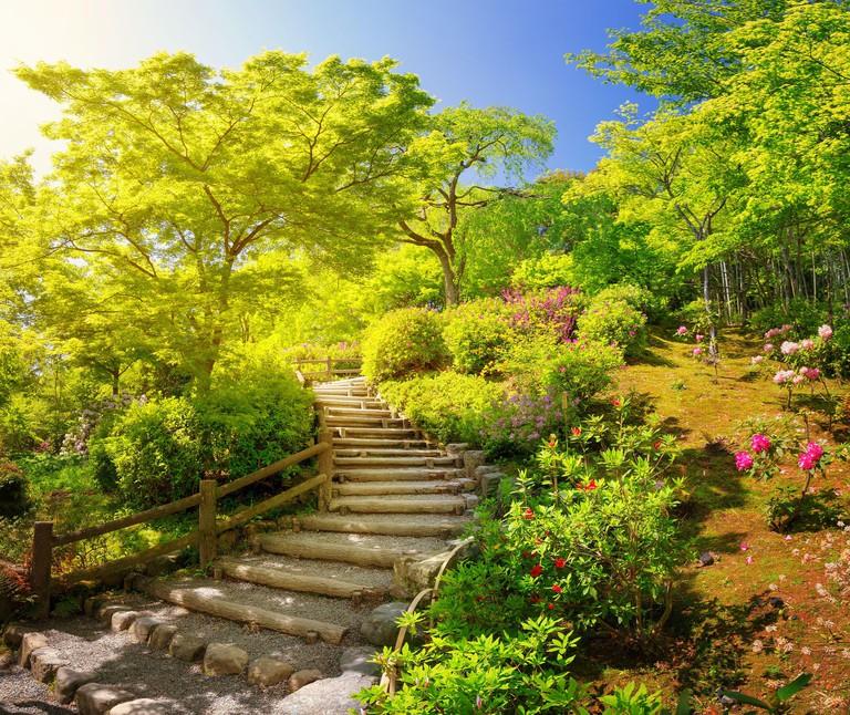 Garden near Tenryu-ji Temple in Kyoto, Japan