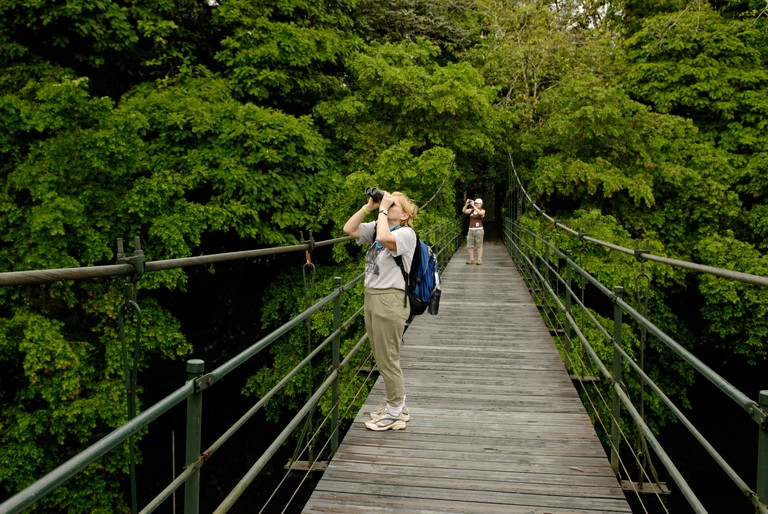 Two ecotourists observing and photgraphing wildlife in primary lowland rainforest at La Selva Biological Station Costa Rica. Image shot 2017. Exact date unknown.