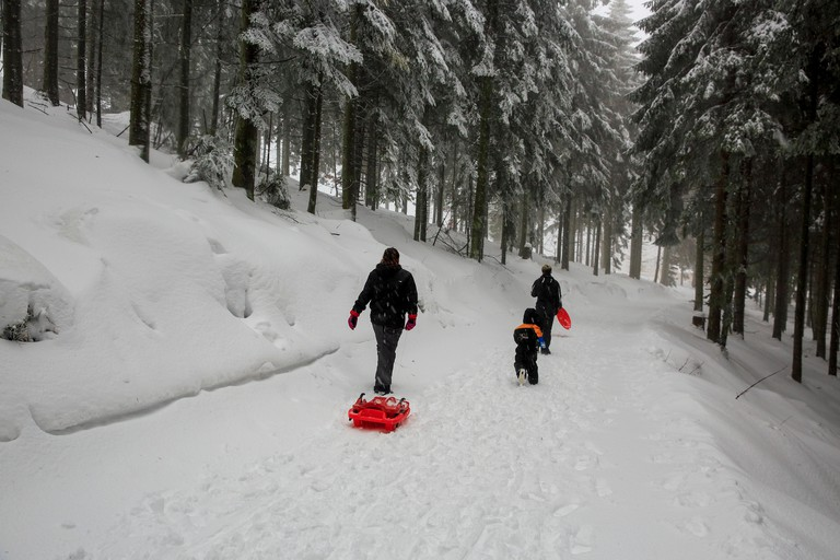 Tourists roam inside the snow-covered the Black Forest. Baden-wurttemberg, Germany