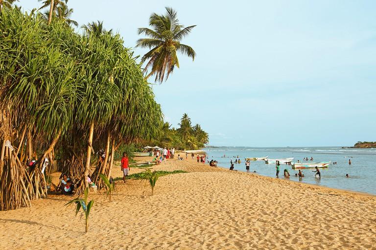 Beach lined with palm trees, Beruwela, Western Province, Indian Ocean, Ceylon, Sri Lanka