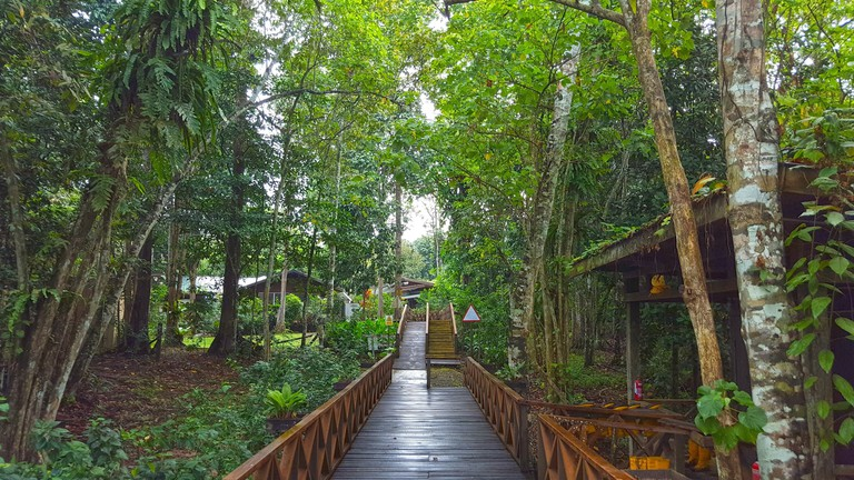 Borneo Nature Lodge_be4b9c0d