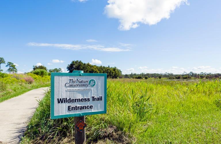 Trailhead at the Nature Conservancy Disney Wilderness Preserve, Poinciana, Kissimmee, near Orlando, Central Florida, USA