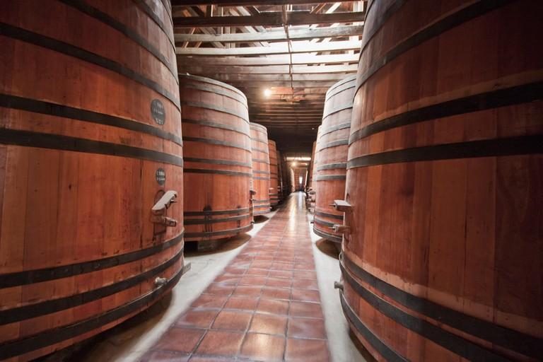 Barrels in the historic cellar of Vina Cousino Macul winery, Santiago, Metropolitan Region, Chile