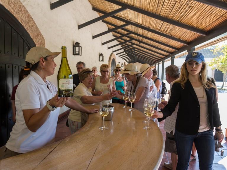 wine tasting, Concha y Toro vineyard, Santiago, Chile. Image shot 02/2015. Exact date unknown.