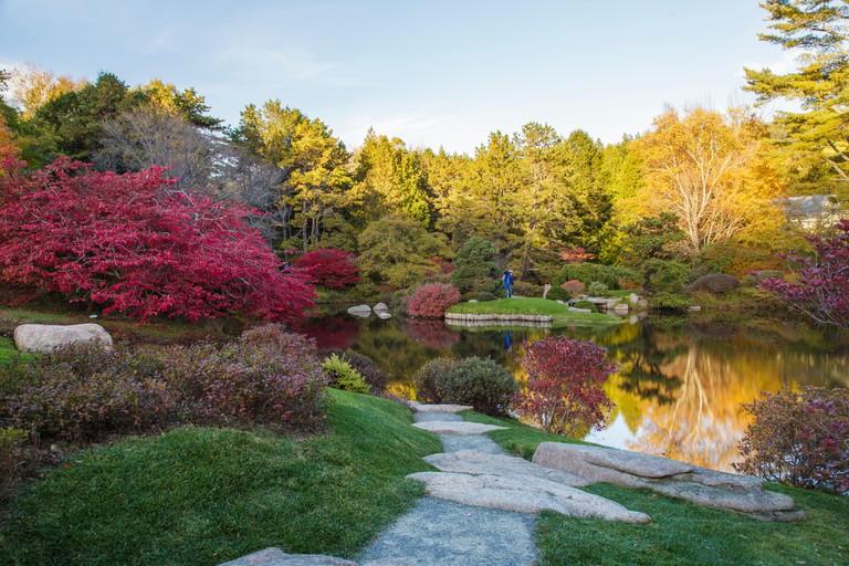 Asticou Azalea Garden, Northeast Harbor, Maine in Autumn (for editorial use only)