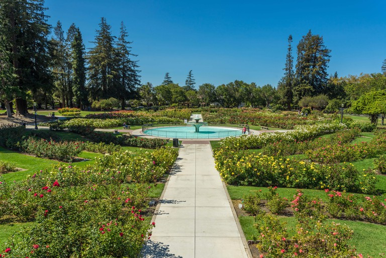 Municipal Rose Garden, San Jose, Silicon Valley