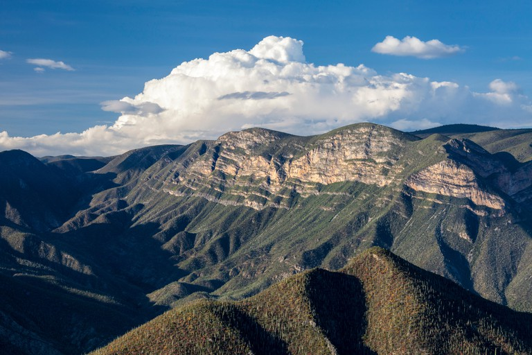 The mountains of northern Oaxaca, Mexico.