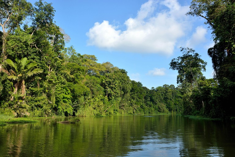 Landscape in Tortuguero National Park Costa Rica