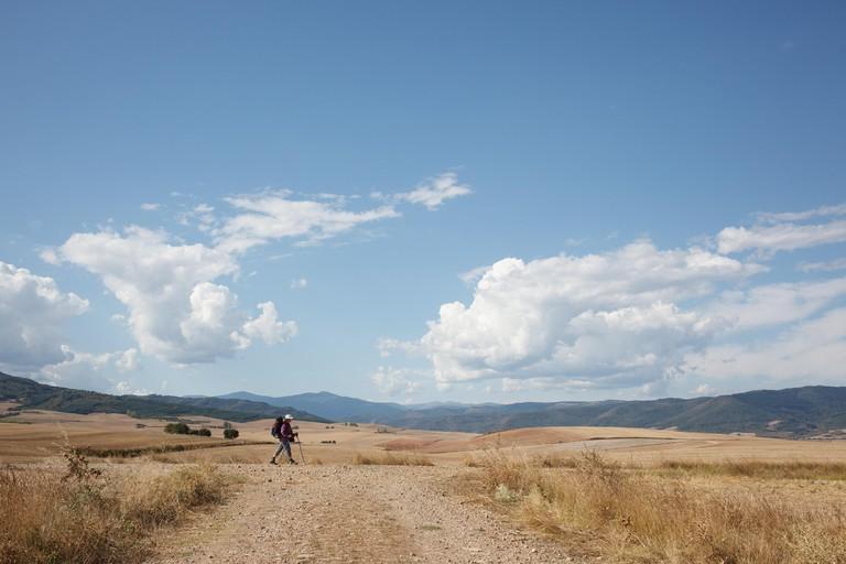 13/9/14 Pilgrim walking Camino de Santiago near Santo Domingo de la Calzada, La Rioja, Spain