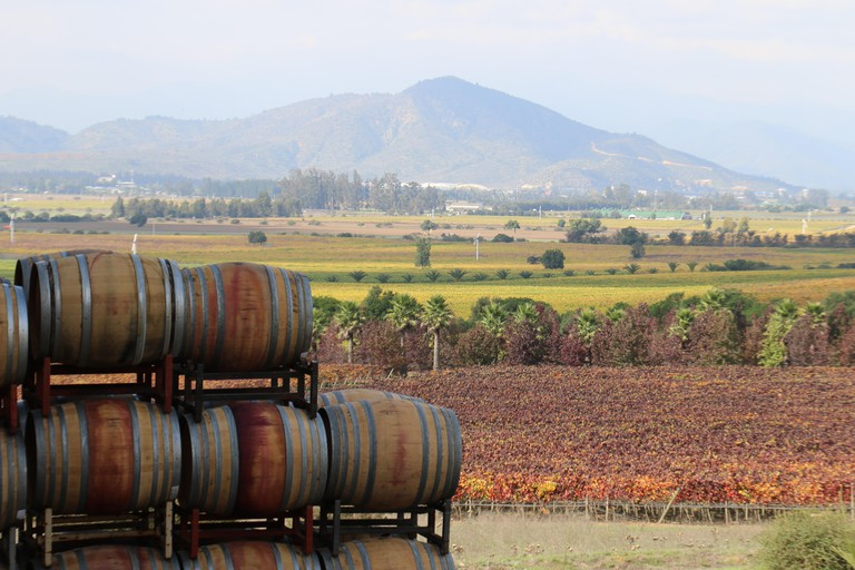 wine Barrels stagged up with vineyards and mountains at the back at Kingston Vineyards, Casablanca Valley, Valparaiso, Chile