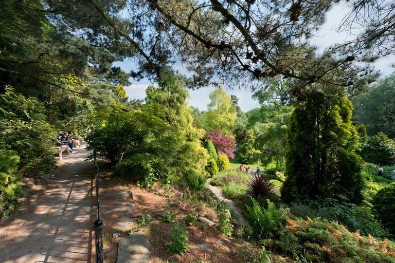 The rock garden in Fletcher Moss Botanical Garden, located in the Didsbury area of Manchester, UK.