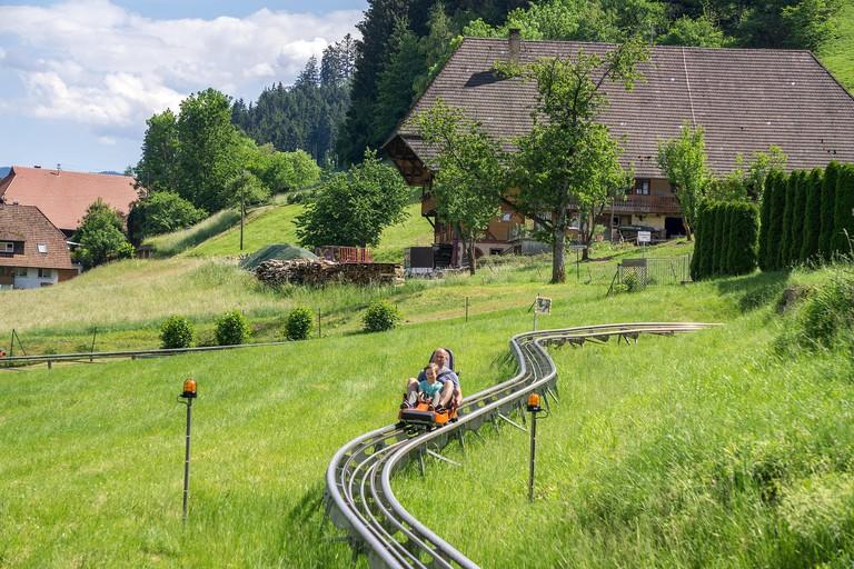 Sommerrodelbahn in Gutach, Schwarzwald, Baden-Wuerttemberg, Deutschland, Europa | Dry toboggan run at the village Gutach, Black Forest, Baden-Wuerttem