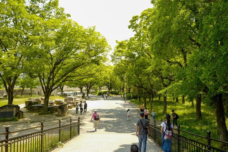 Osaka-Castle-Park_TWDB6C