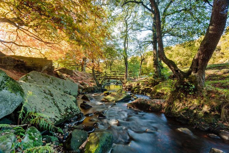Beautiful autumn colours at Padley Gorge