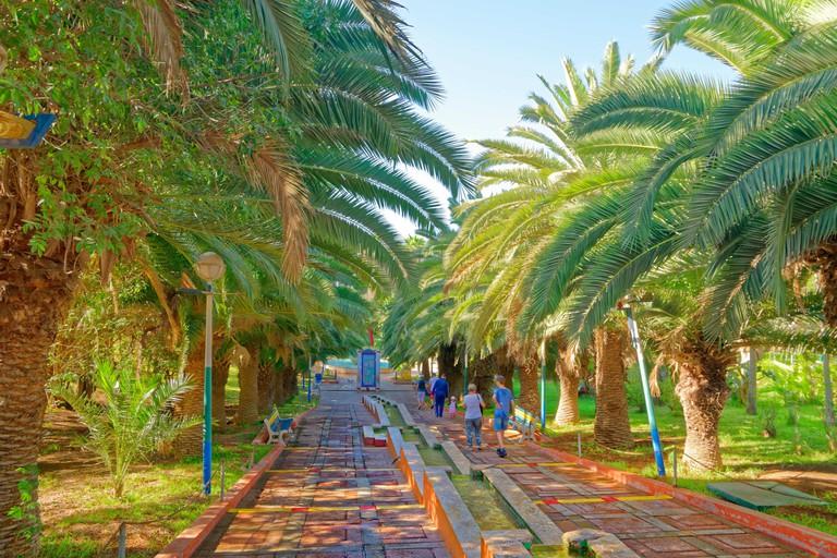 Bird Valley park, Vallee des Oiseaux, in central Agadir, Souss-Massa Province, Morocco, North West Africa.