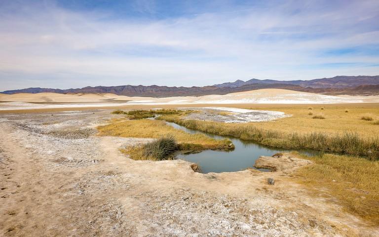 Tecopa Hot Springs Landscape