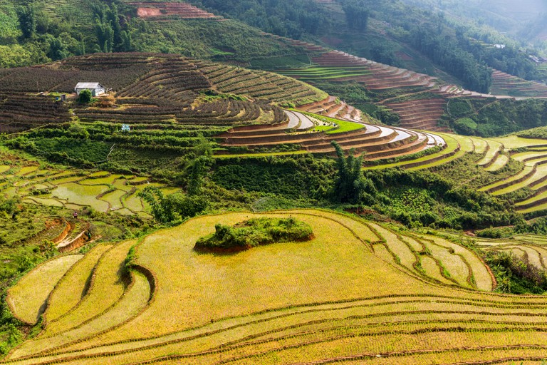 Terraced rice paddies in broken sunshine from above near Sa Pa northern Vietnam