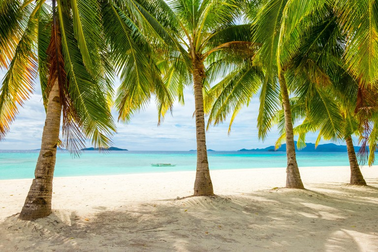 Palm trees and blue water on the white sand beach of Malcapuya Island, Culion, Palawan, Philippines. Image shot 2014. Exact date unknown.