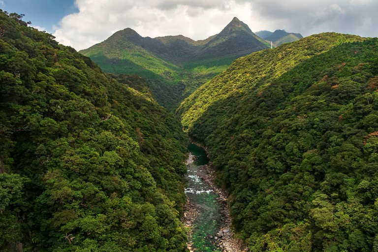 Anbo River in Yakushima is a very beautiful river. It can be seen from the bridge that is very high, so it can see the flow of the river from the moun