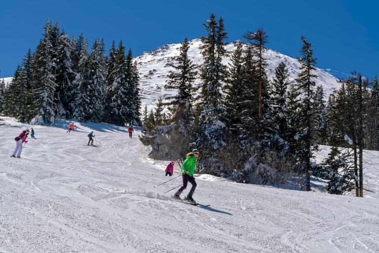 skiers on the ski slope.Vitosha Mountain, Bulgaria.