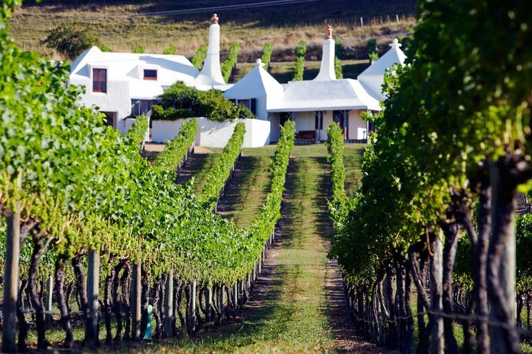 Coleraine Vineyard and residence of John Buck of Te Mata Estate Hawkes Bay New Zealand