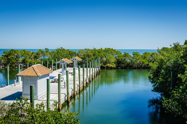 Biscayne National Park encompasses coral reefs, islands and shoreline mangrove forest in the northern Florida Keys. Its reefs and islands are accessib