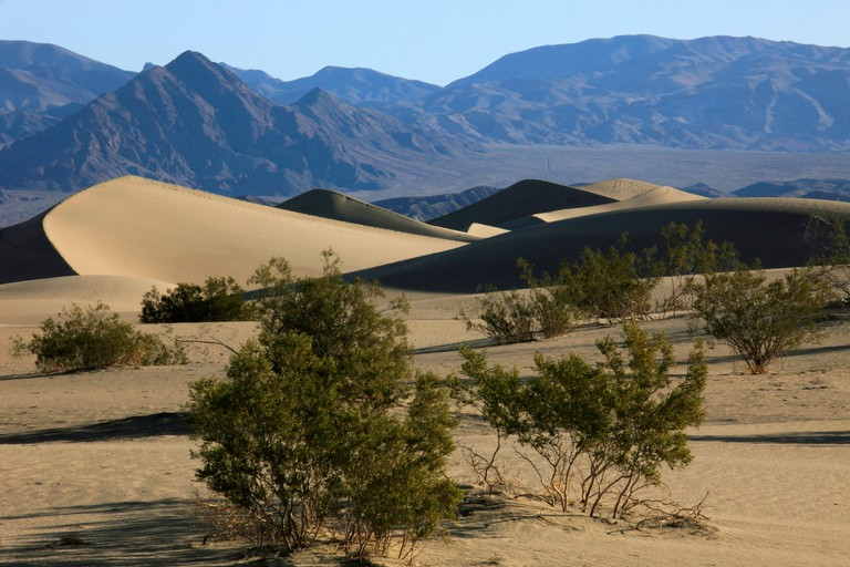 USA, California, Death Valley, National Park, Mesquite Flat, sand dunes,
