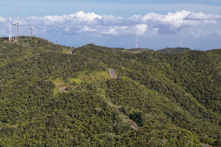 Jungles around Cerro de Punta, Puerto Rico, highest point