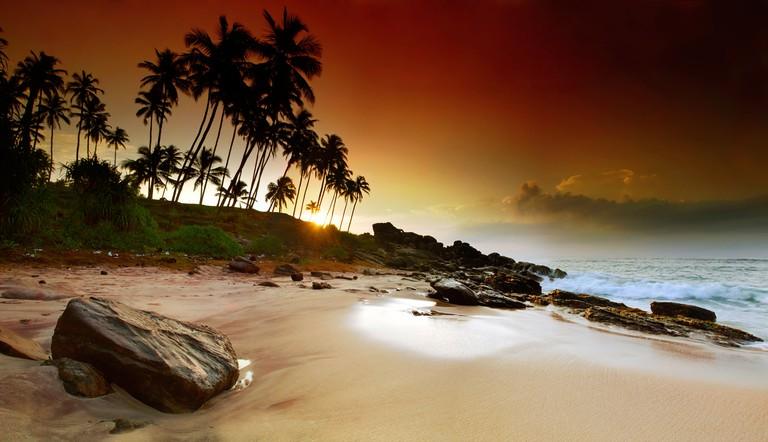 Extremely beautiful vivid sunrise under the coconut plams on Sri Lanka beach. Panoramic photo