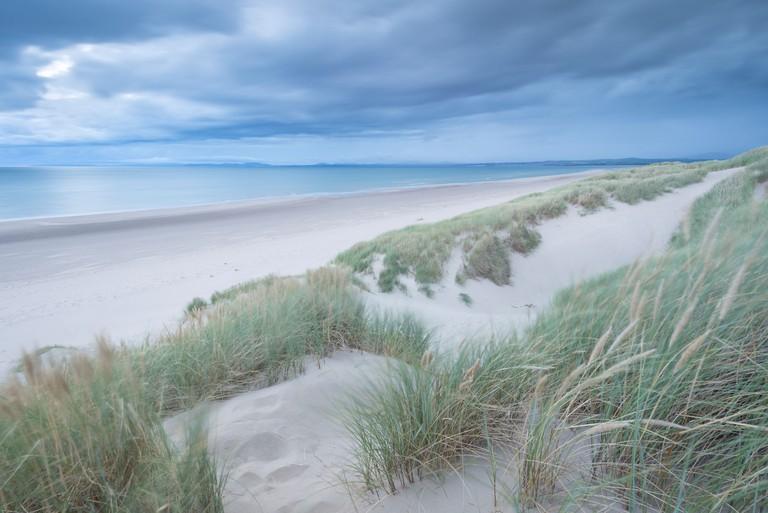 Sand Dunes above Harlech Beach, Snowdonia National Park, Gwynedd, Wales. Autumn (September) 2013.