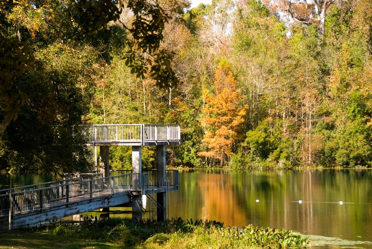 Wakulla Springs State Park spring boil cypress trees fall colors Florida