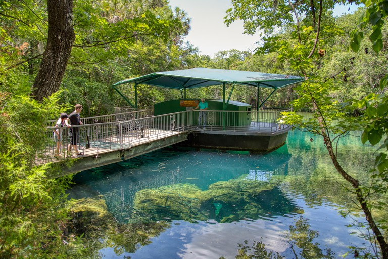 MAY 22, 2013, ELLIE SCHILLER HOMOSASSA SPRINGS, FL: The Fish Bowl observatory at this Florida state park lets guests see underwater wildlife.