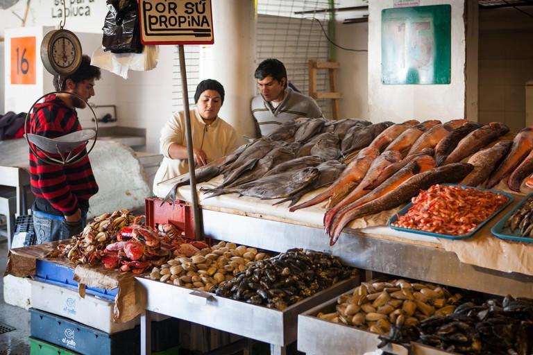 Fishermen at the fish market, Caleta Portales, Valparaiso, Chile