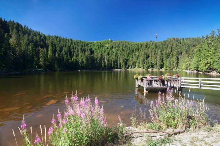 Mummelsee lake, Black Forest National Park, Baden-Wuerttemberg, Germany