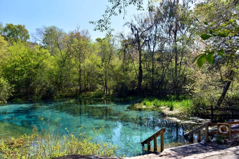 Ichetucknee-Springs-State-Park_2A1CMHB