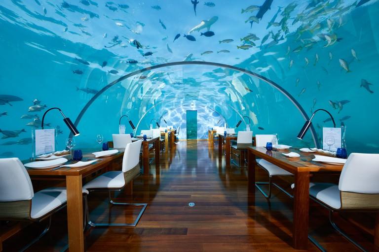Ithaa Undersea Restaurant_CONRAD MALDIVES RANGALI ISLAND_F&B_Ithaa Undersea Restaurant_Hero_credit Justin Nicholas_hi-res (2)