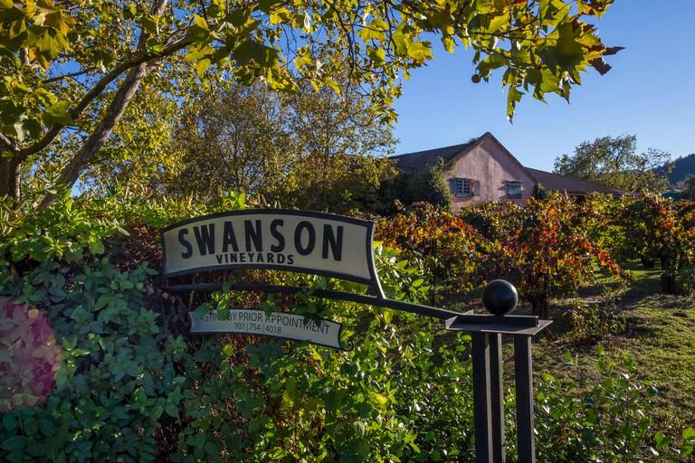 Swanson Vineyards, Rutherford, Napa Valley, Napa County, California, United States, North America