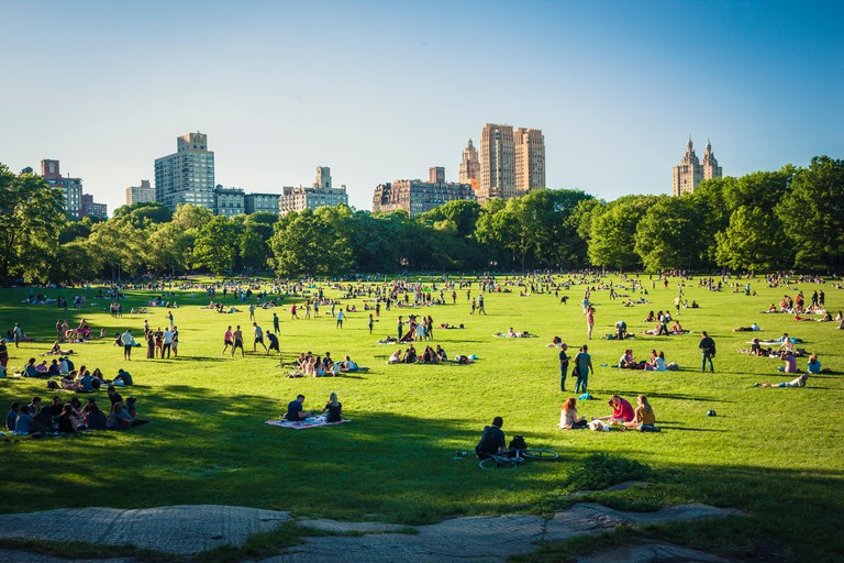 People ejoying free time on Sheep Meadow in Central Park, NewYork City