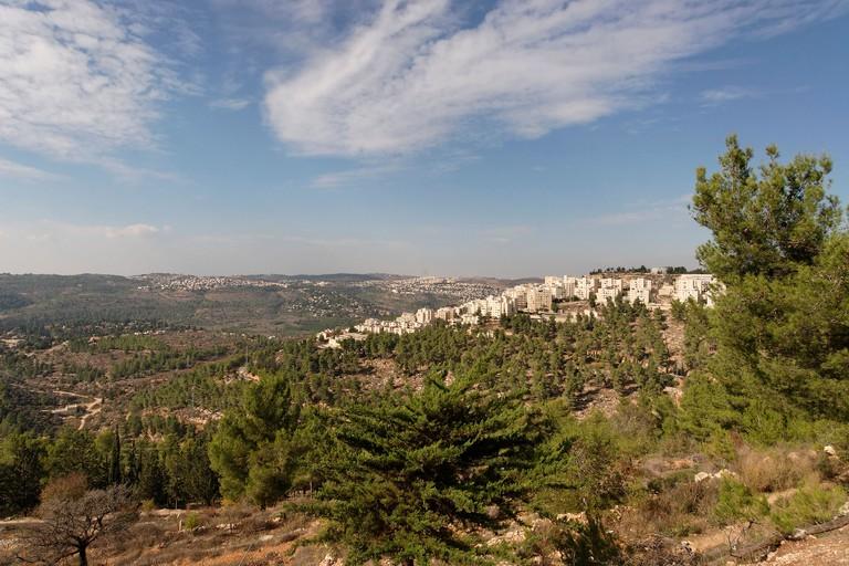 Jerusalem Israel Jerusalem forest and Har Nof neighborhood as seen from Mount Herzl