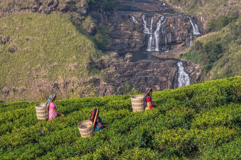 St Clair falls, tea pluckers, Nuwara Eliya, Sri Lanka, Asia