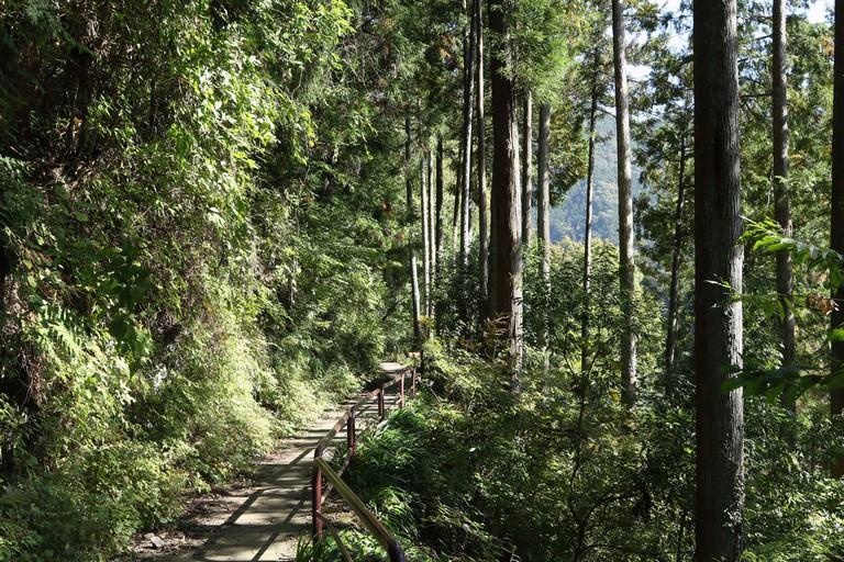 Hiking trail on Okutama Mukashi Michi Hike, Ishikawa prefecture, Tokyo, Japan