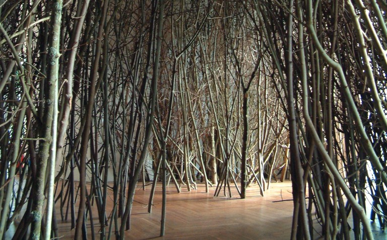 Olafur Eliasson, The Forked Forest path, 1998, copyright the artist. Installation view. Image_ Towner Eastbourne 2