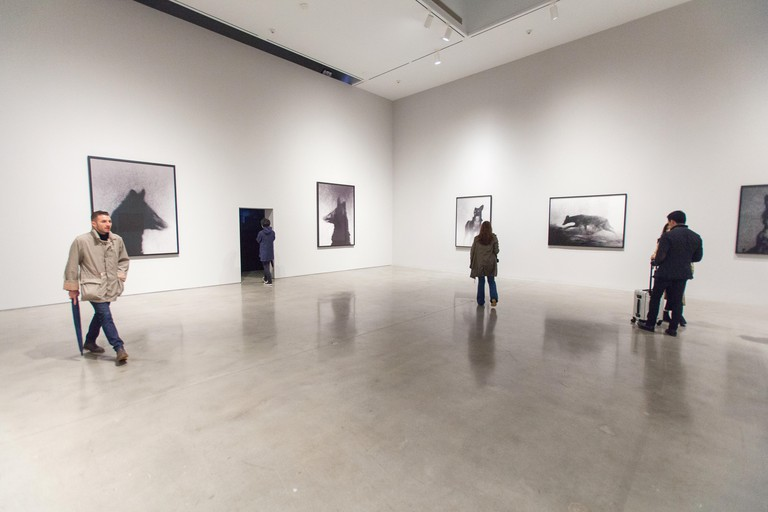 Michal Rovner Night exhibition at the Pace gallery, Chelsea, New York City, United States of America.